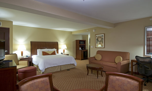 Hilton Garden Inn Troy King